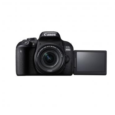 Canon 800D STM - 03 Jacaranta