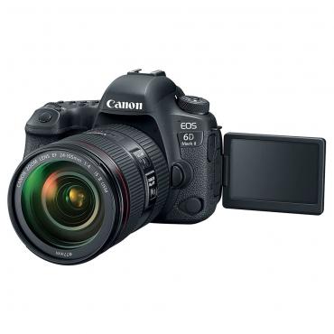 Canon EOS 6D Mark II - EF 24-105mm f4 L IS II - 04 Jacaranta