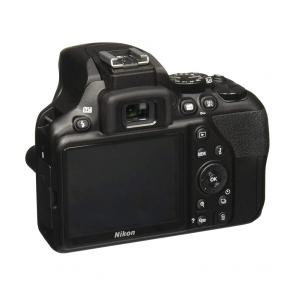 Nikon D3500 - 03 Jacaranta