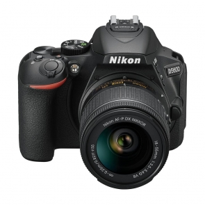 Nikon D5600 - 04 Jacaranta