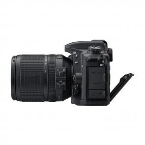 Nikon D7500 - 02 Jacaranta