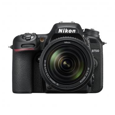 Nikon D7500 - 07 Jacaranta