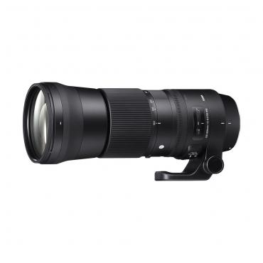 Sigma 150-600mm 5-6.3 Contemporary DG OS HSM Lens for Canon - 01 Jacaranta