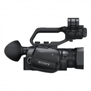 Sony PXW-X70 - 05 Jacaranta